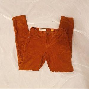 Anthropology Pants